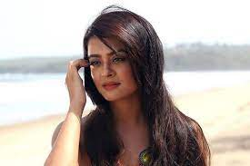 Surveen Chawla, an Indian film actress and dancer. She started her career with television soap operas in the earlier days and ended up in appearing in the films.